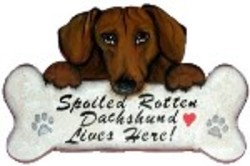 doxie_-_spoiled_rotten_std